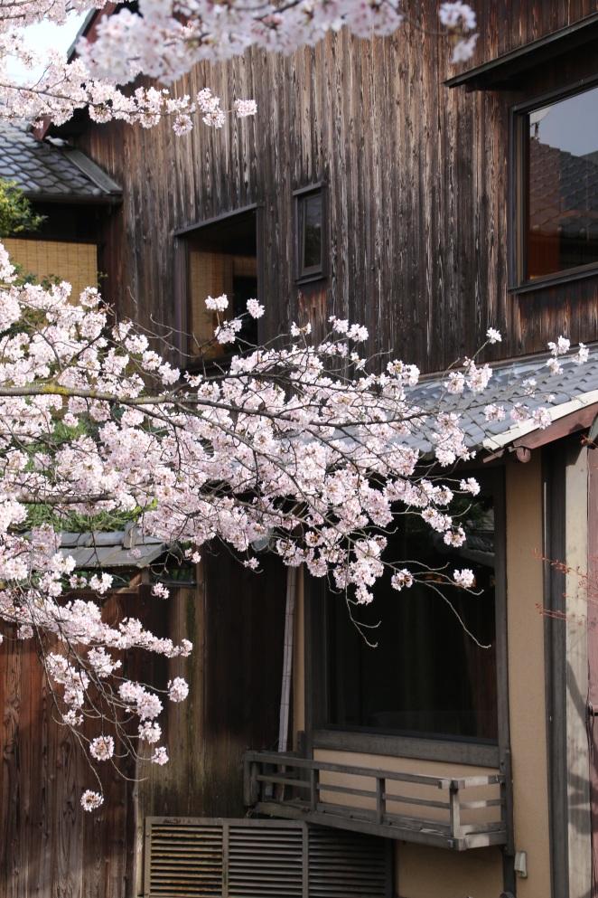 japanhouse 1